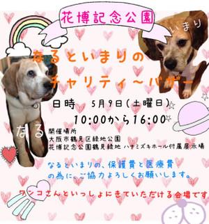 Fc2blog_20150408100216fcb_2